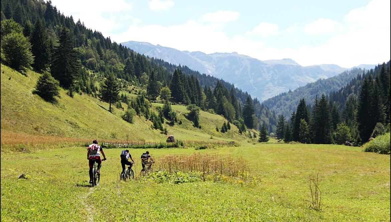 Ćiro Trail